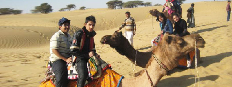 Excursion_Camel