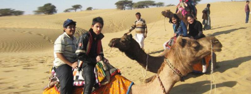 Excursion_Camel