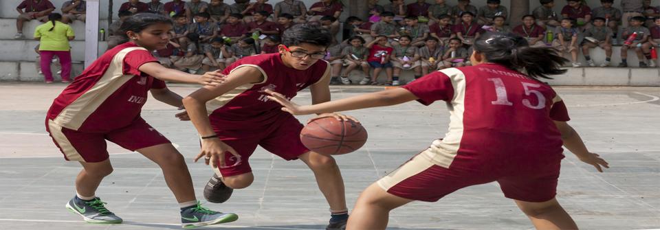Sports (5)